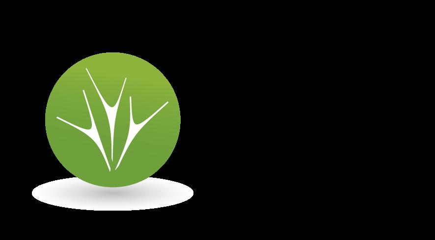 PZZW-logo-poziom-rgb